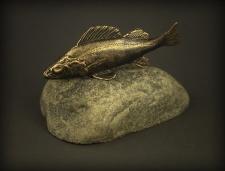 Ešerys (Perca fluviatilis)