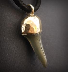 Amuletas su ryklio dantimi